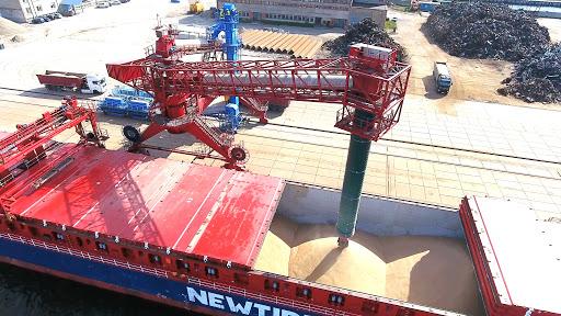 grain export2